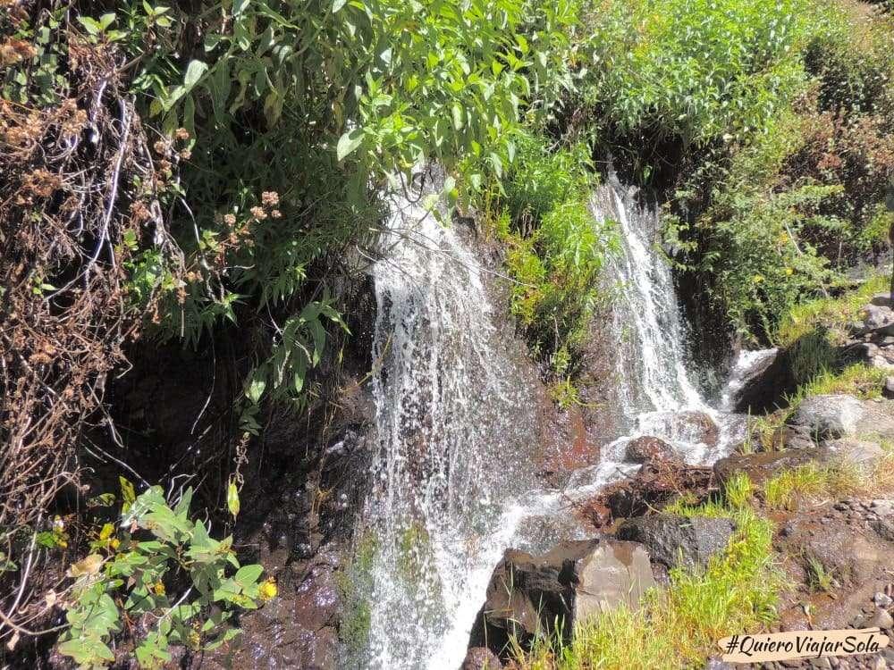 Bosque de los Tilos, nacientes de Marcos y Cordero