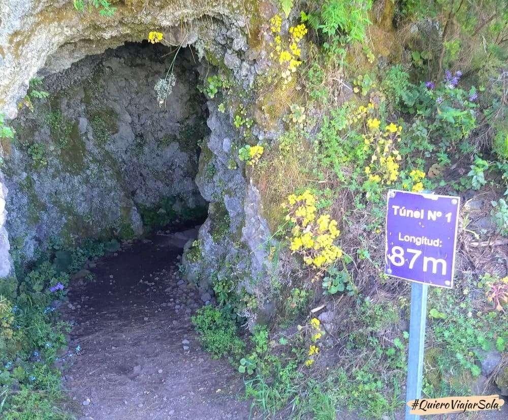 Bosque de los Tilos, túnel