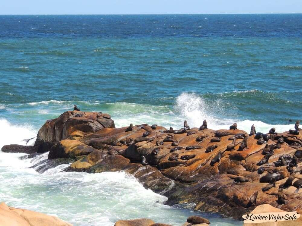 Viajar sola a Rocha, Cabo Polonio