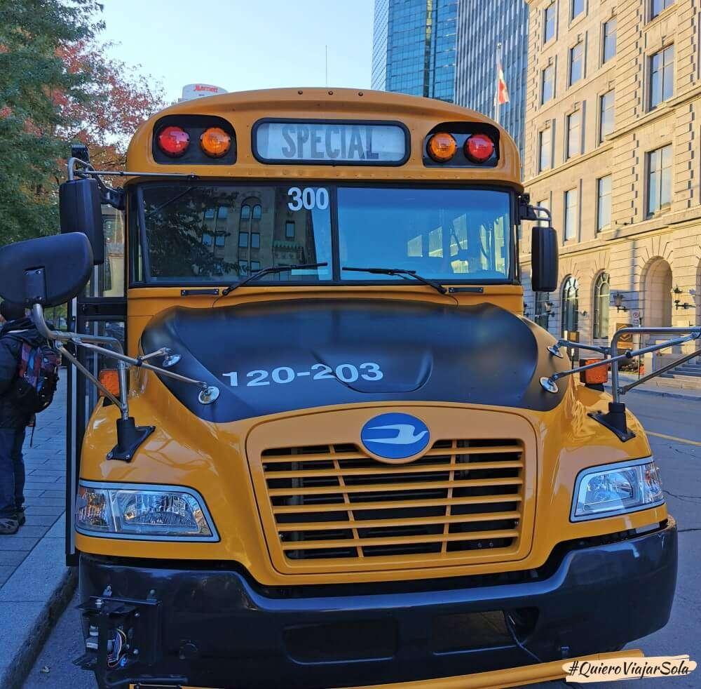 School bus de Navette Natour