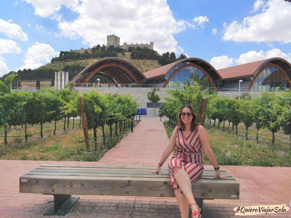 Excursión a Peñafiel, bodegas Protos