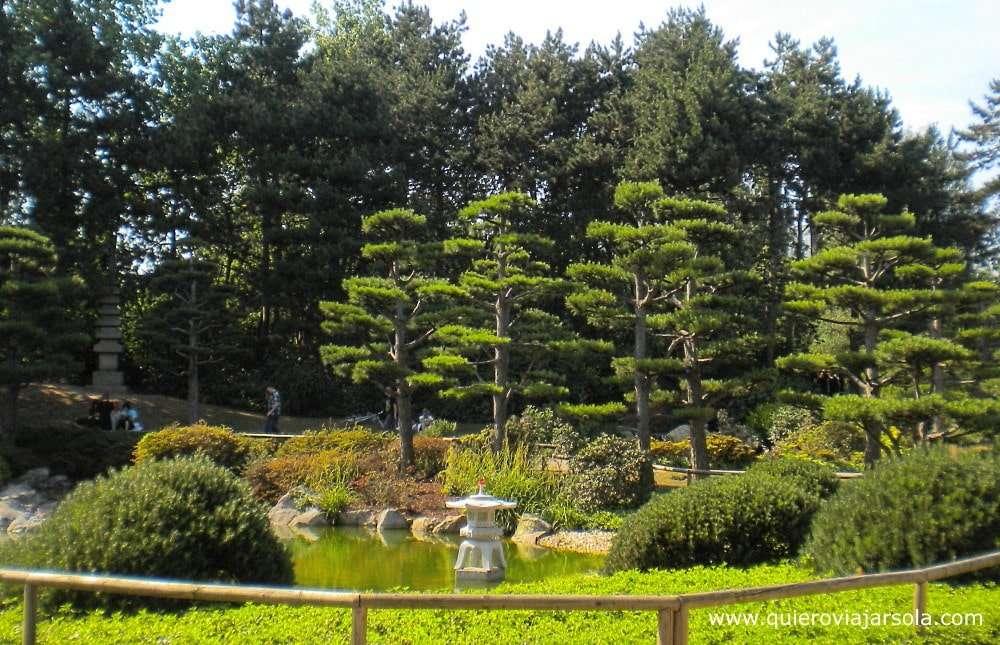 Que ver en Düsseldorf, jardín japonés