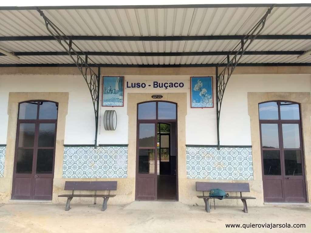 Visitar el Bosque de Busaco, estación Luso