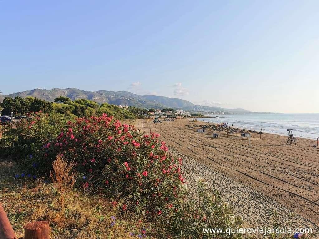 Que hacer en Alcocéber, playa Romana